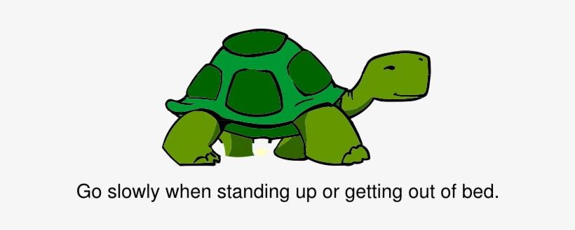 Turtle Clipart Slow Turtle Cartoon Turtle Side View Transparent
