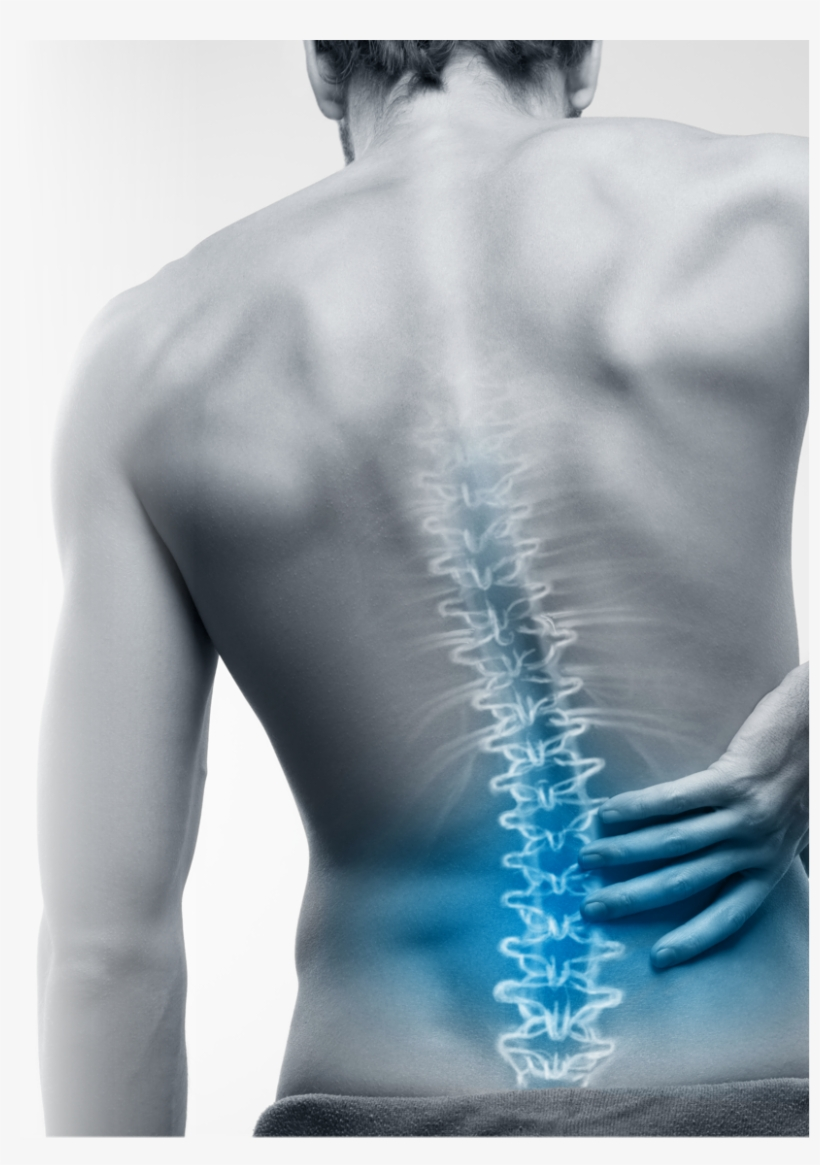 The Benefits Of Rolfing Structural Integration Lower Back Pain Transparent Png 824x1131 Free Download On Nicepng