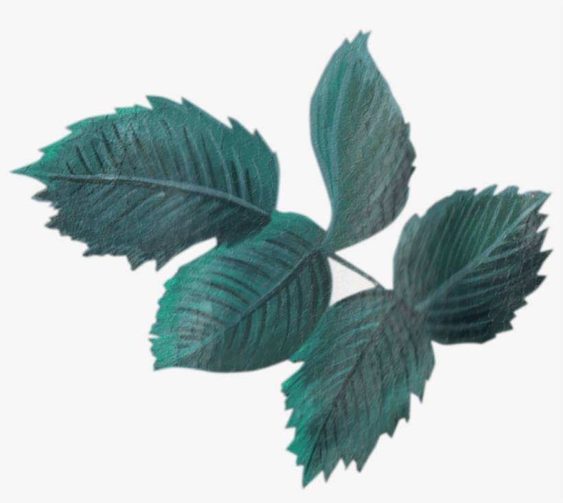Dustcloud Studio Vintage Leaf Transparent Transparent Png 1012x857 Free Download On Nicepng