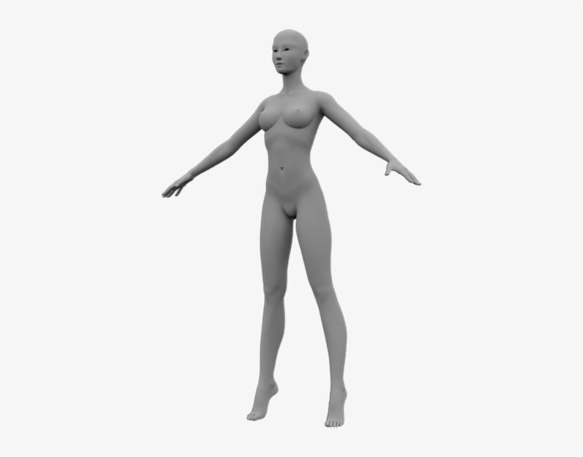 3d Model Base Mesh, Female, Sculpt, Unwrap, Uv - Human 3d