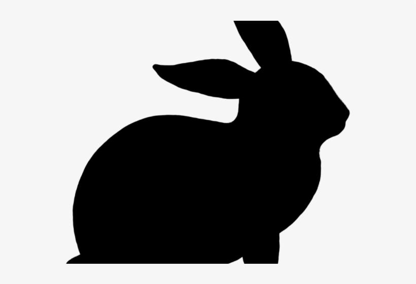 Bunny clipart Easter clipart Easter bunny clipart carrot | Etsy