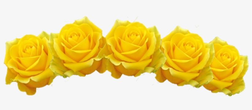 Yellow Flower Crown Png Image Download - Transparent Yellow Flowers ... ea714965b3a