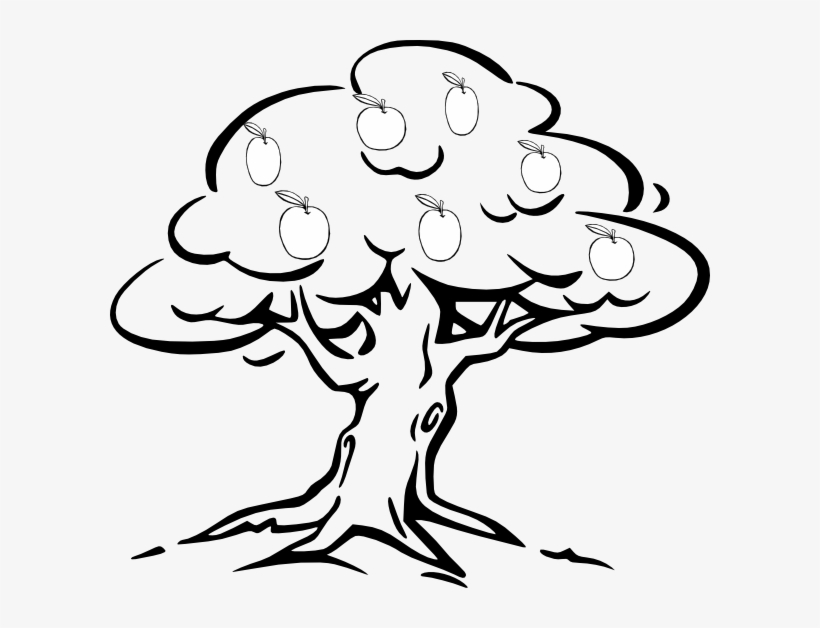 28 Collection Of Easy Apple Tree Drawing - Fruit Tree ...