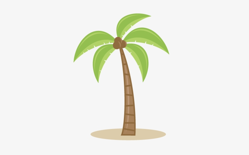 Palm Tree Svg Cutting Files For Scrapbooking Beach Palm Tree Clipart Without Background Transparent Png 432x432 Free Download On Nicepng