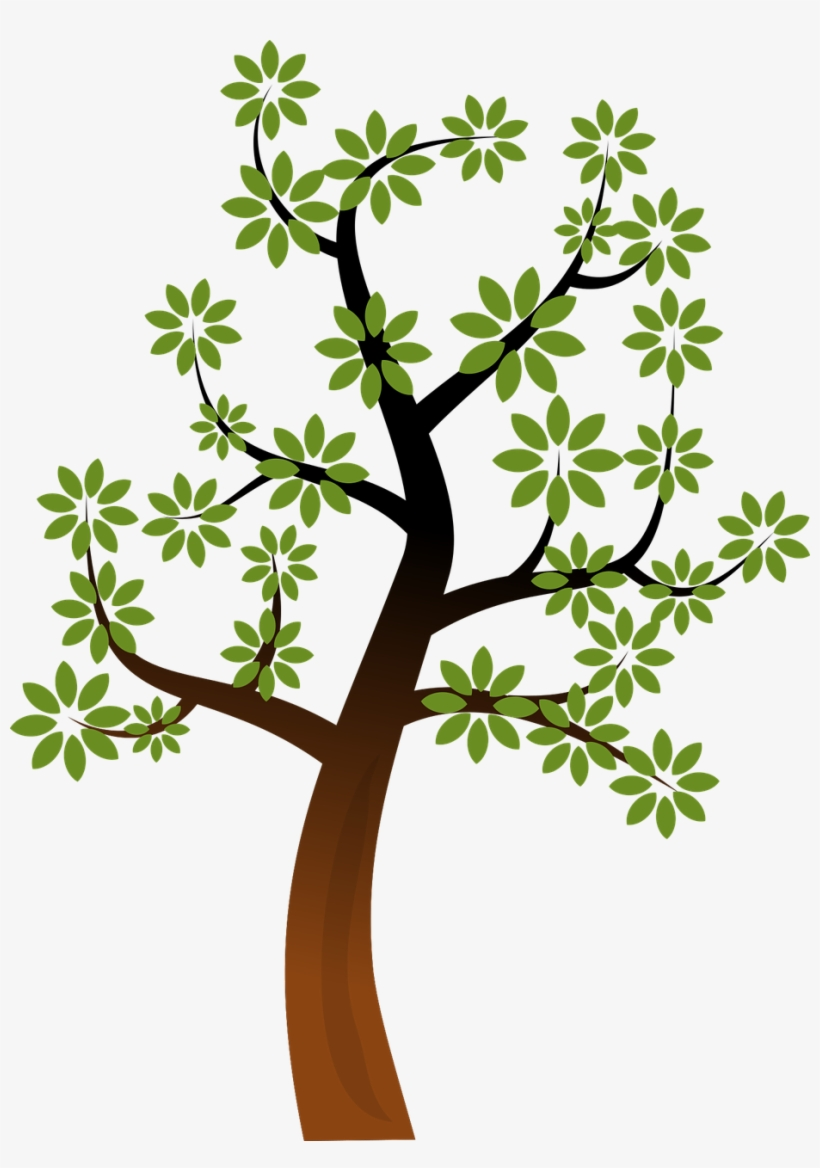 Bare Tree Clipart Free Clipart Public Domain Tree Clipart Transparent Png 494x678 Free Download On Nicepng