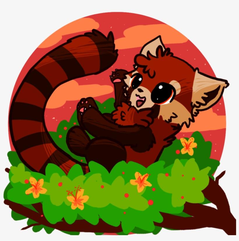 Drawn Red Panda Wallpaper Cute Drawings Of Red Pandas Transparent Png 900x900 Free Download On Nicepng