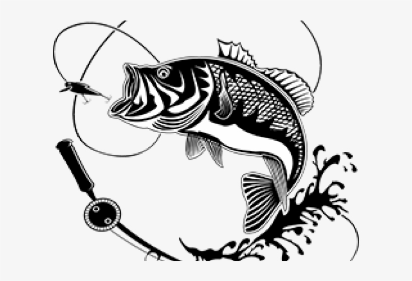 Carp Clipart Largemouth Bass Fish With Hook Silhouette Transparent Png 640x480 Free Download On Nicepng
