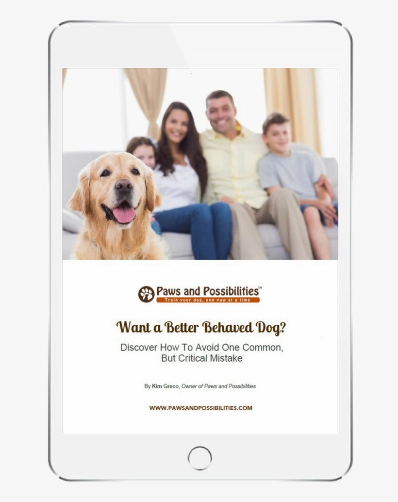 Dog Training Golden Retriever Transparent Png 816x1056 Free