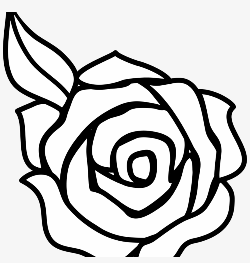 White Flower Clipart Flower Black And White Rose Flower Simple Easy Drawing Of Roses Transparent Png 1024x1024 Free Download On Nicepng
