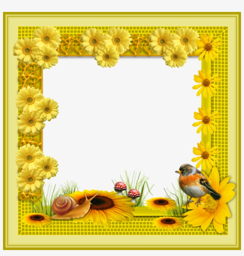 Frame Png Clipart Picture Frames - Flowers Frame In Png