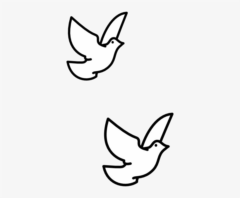 Drawn Turtle Dove Vector - Clipart Flying Bird Drawing