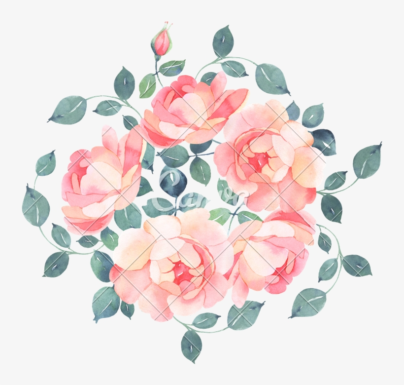 Watercolor Bouquet Png Flower Bouquet Transparent Png 800x800 Free Download On Nicepng