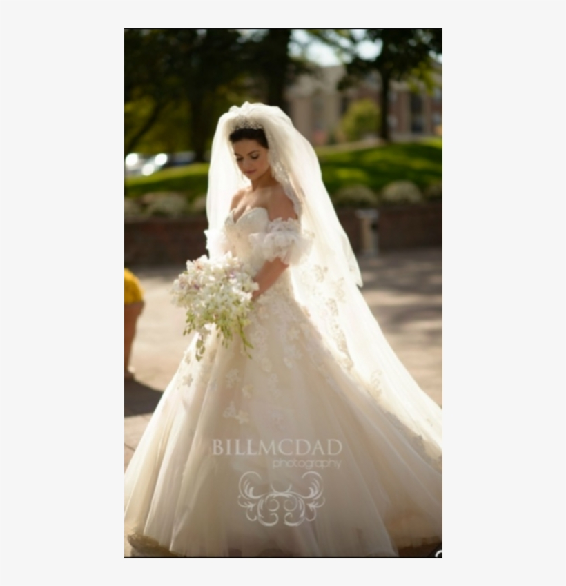 David Tutera Wedding Dresses Wedding Dress Transparent Png 1024x768 Free Download On Nicepng,Chiffon Maxi Black Maxi Dress Pakistani Wedding