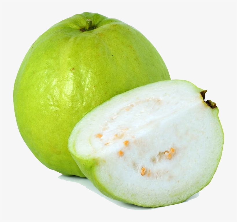 guava png image guava clip art guava white transparent png 1000x872 free download on nicepng guava png image guava clip art