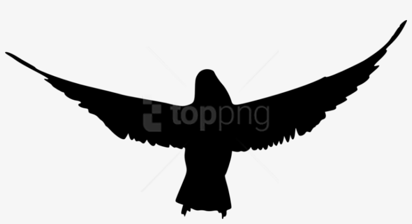 Bird Silhouette Png Transparent Background Raven Silhouette Transparent Png 850x421 Free Download On Nicepng This silhouette may be used royalty free with attribution for personal and educational purposes. bird silhouette png transparent