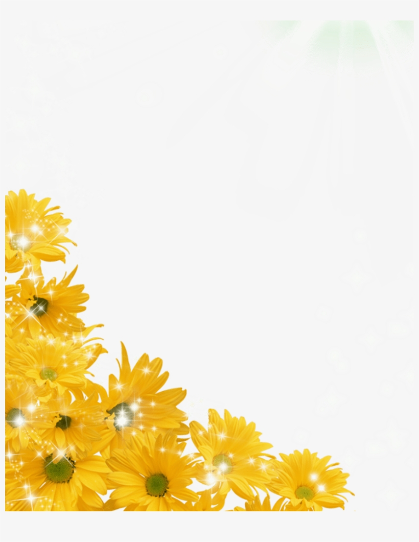 Sunflower PNG & Download Transparent Sunflower PNG Images ...