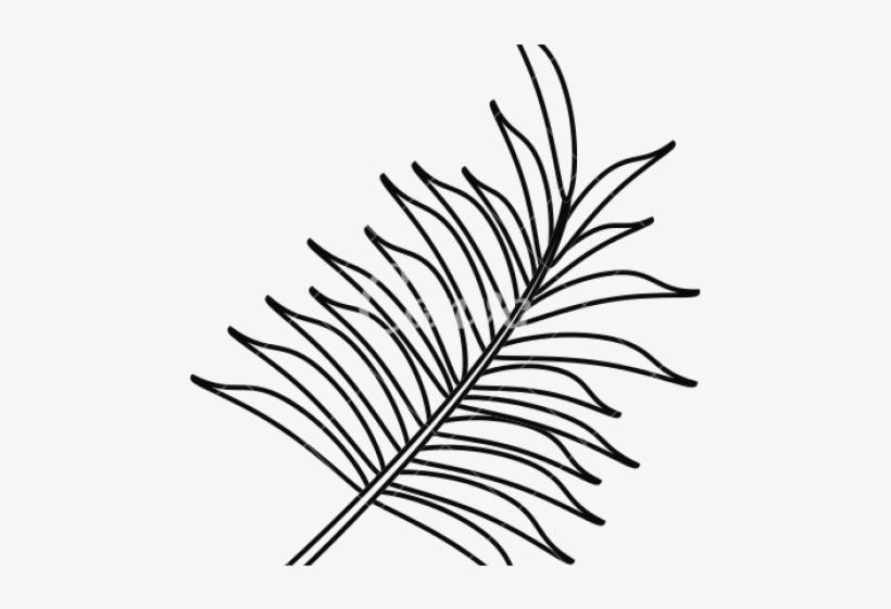 Download Png Leaf Outline Png Gif Base Download 341 tropical leaf outline free vectors. download png leaf outline png gif base