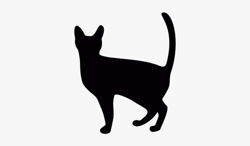Witch Cat Vector - Cat Icon Png@nicepng.com
