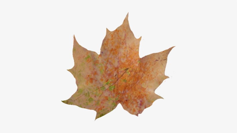 Fall Leaves Pile Png Download Autumn Leaves Transparent Background Transparent Png 409x379 Free Download On Nicepng