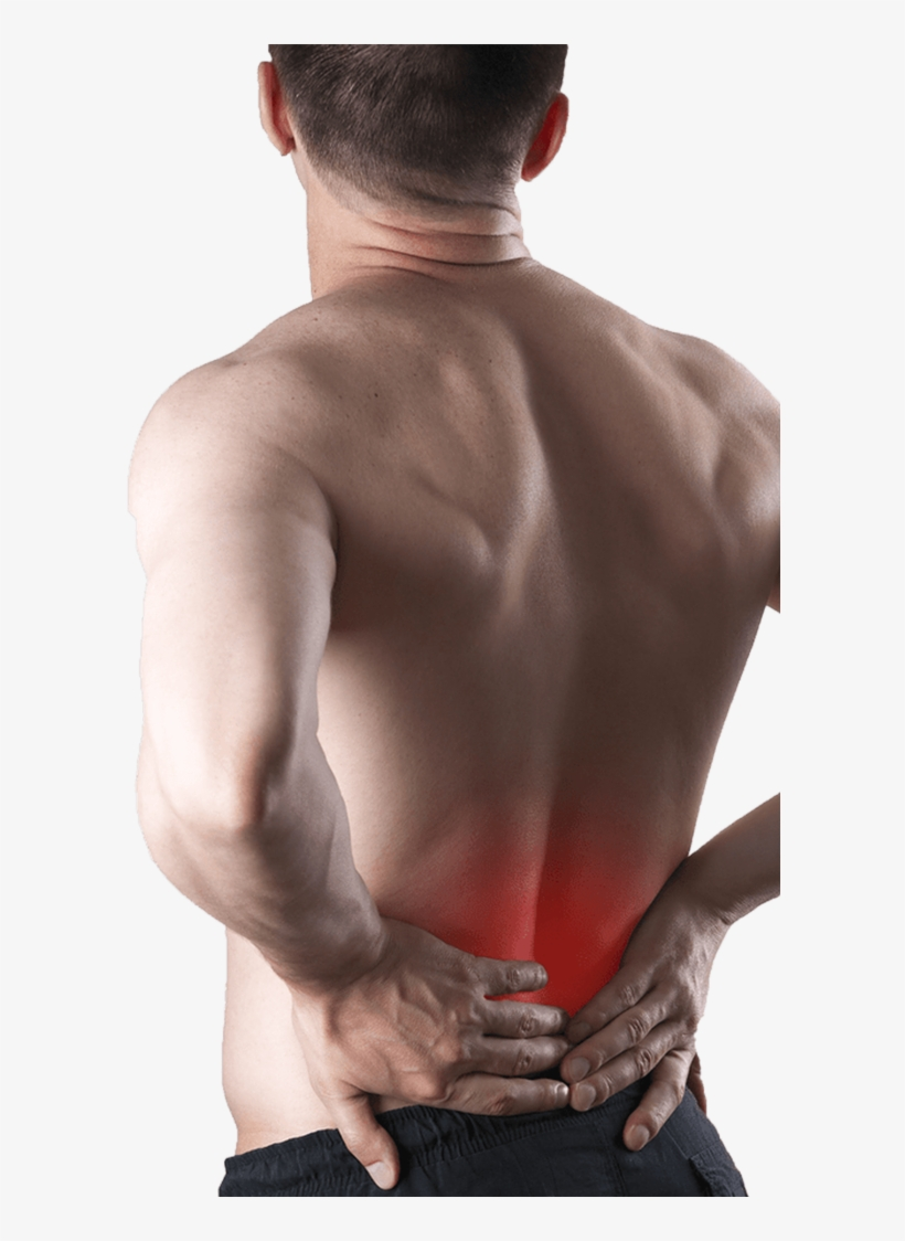 Lower Back Pain Back Pain Transparent Png 595x1044 Free Download On Nicepng