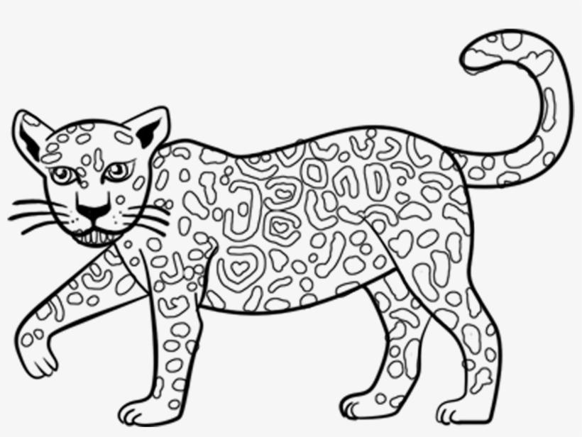 Excellent Cartoon Jaguar Coloring Pages With Jaguar Jaguar Outline Transparent Png 1729x1271 Free Download On Nicepng