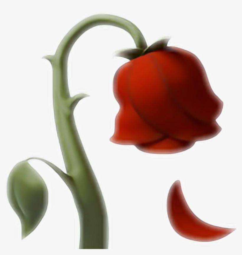 Emoji Rose Rosa Ios10 Whatsapp Red Love Flower Rose Emoji