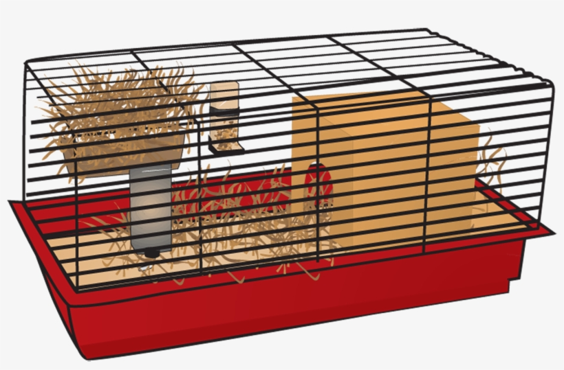 Hamster Cage Transparent Png 1240x800 Free Download On Nicepng