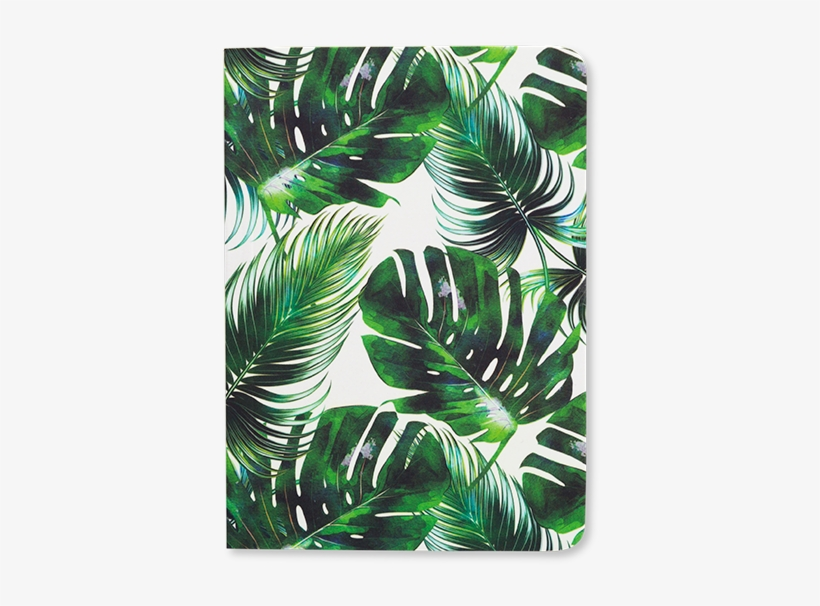 Tropical Leaf Handbag Notes Palm Leaf Print Tropical Leaf Transparent Png 800x800 Free Download On Nicepng Download 4,096 tropical leaves free vectors. tropical leaf handbag notes palm leaf