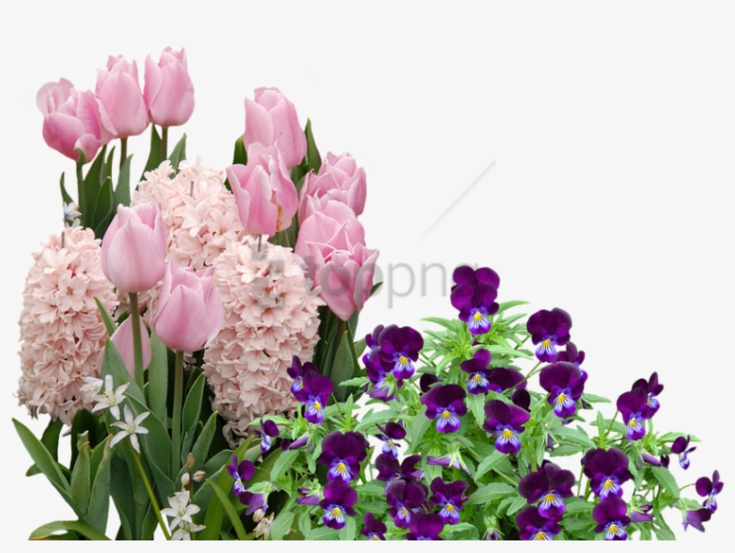 Free Png Easter Flowers Png Image With Transparent Easter
