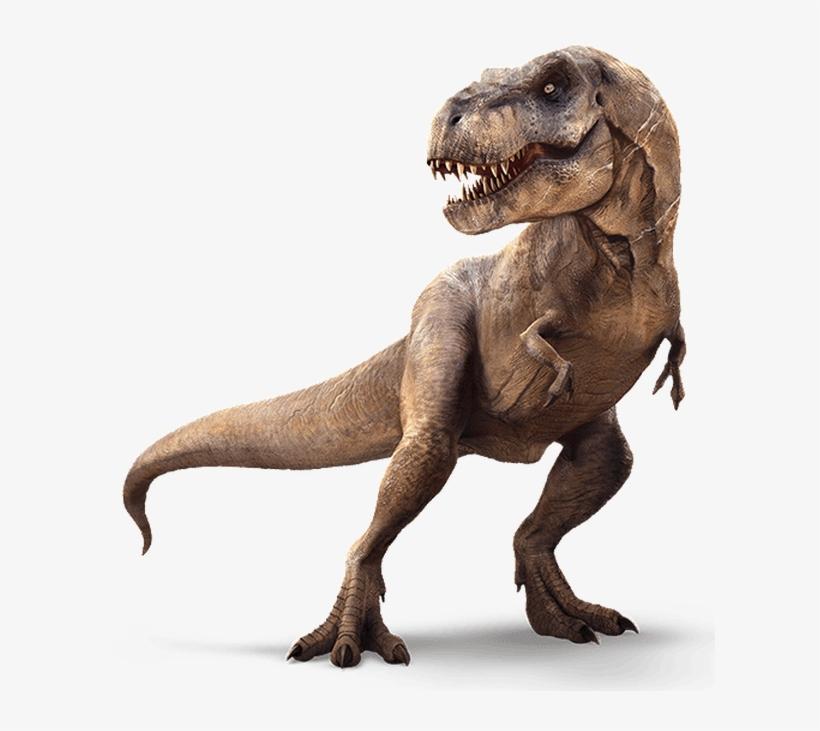 Download Hd My New Channel Imagenes De Dinosaurios 3d Transparent Png Image Nicepng Com Explora nuestra colección de las mejores imágenes y fotos de dinosaurios que puedes descargar y usar totalmente gratis, sin atribución requerida. imagenes de dinosaurios 3d transparent