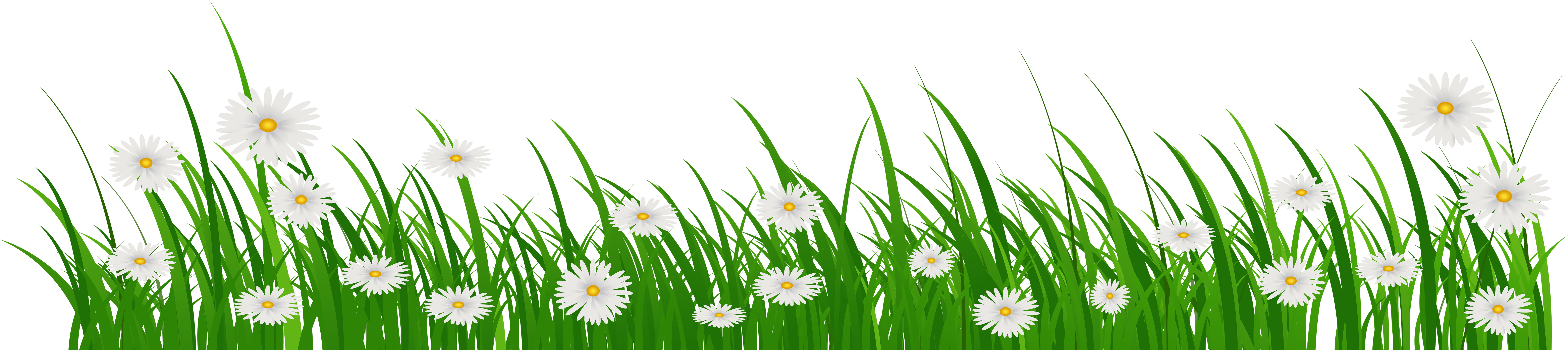 Download Hd Grass With Flowers Png Clip Art Image Grama Com Flor