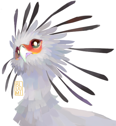 Download Hd Vector Freeuse Download Birb Drawing Watercolor Paint Tool Sai Brushes Transparent Png Image Nicepng Com