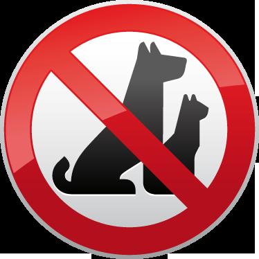 Download HD Following Rules - No Se Permiten Mascotas Transparent PNG Image  - NicePNG.com