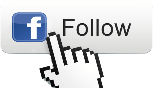Download HD Facebook Follow Button Png Transparent PNG Image - NicePNG.com