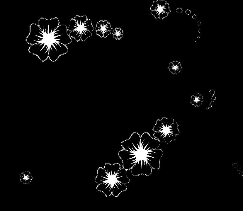 download hd ornament bunga png black floral frame png transparent png image nicepng com black floral frame png transparent png