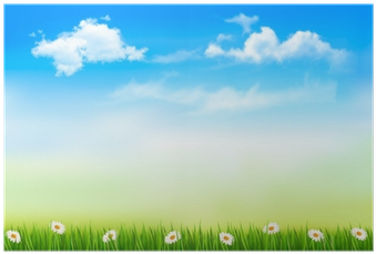 Download HD Summer Nature Background With Green Grass And