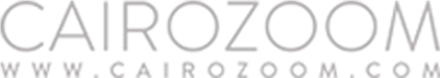 Download Hd Main Media Partners Cairo Zoom Logo Png Transparent Png Image Nicepng Com
