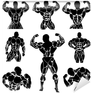 Download Hd Bodybuilding Powerlifting Vector Set Wall