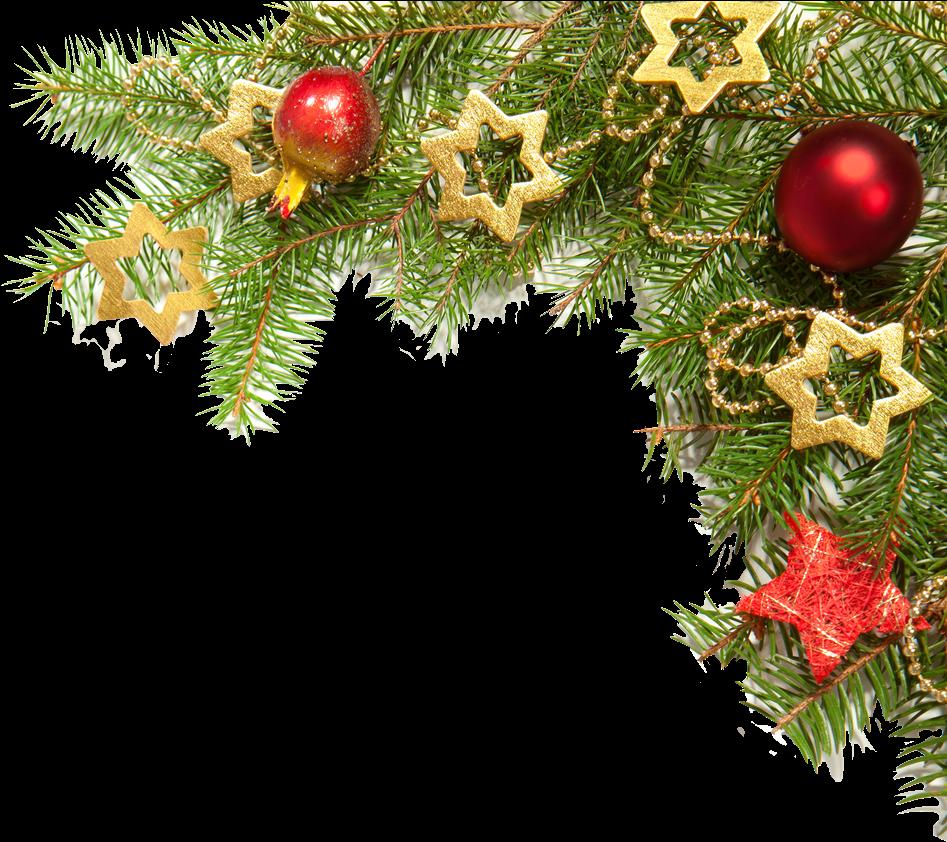 Download Christmas Border Png Images - Christmas Tree ...