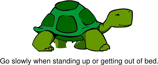 Download Hd Turtle Clipart Slow Turtle Cartoon Turtle Side View