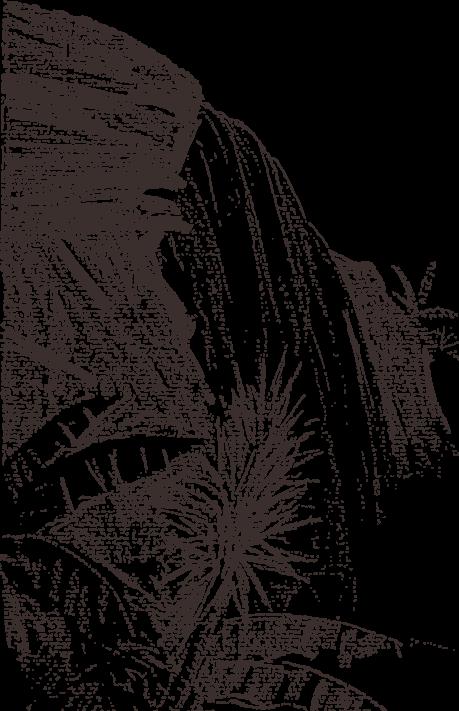 Download Hd Download Sketch Rock Falls Transprent Png Free Waterfall Drawing Transparent Png Image Nicepng Com