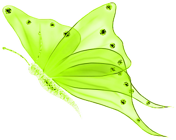 Download Hd Buterffly Mariposa Mariposas Mariposas Mariposas
