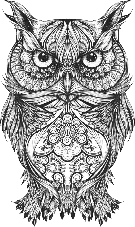 Download Hd Body Owl Sketch Art Tattoo Drawing Clipart Owl Drawing Tattoo Transparent Png Image Nicepng Com